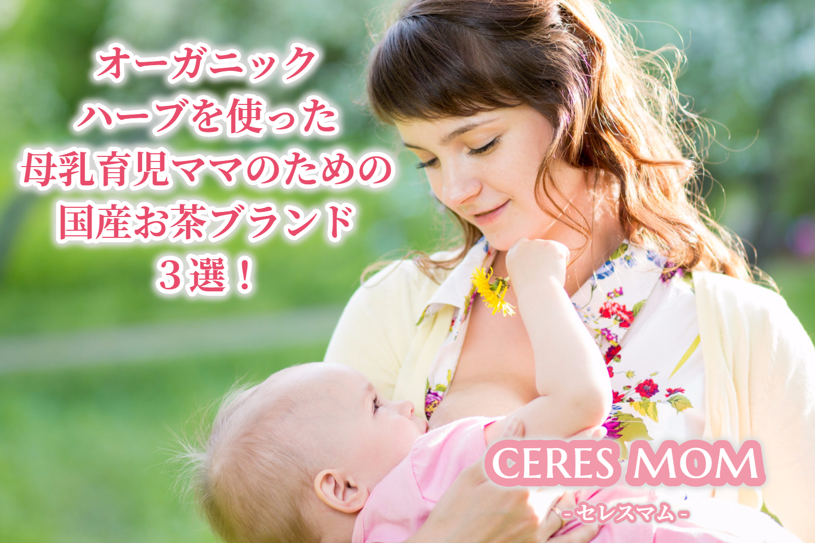 オーガニックハーブを使った母乳育児ママのための国産お茶ブランド3選!