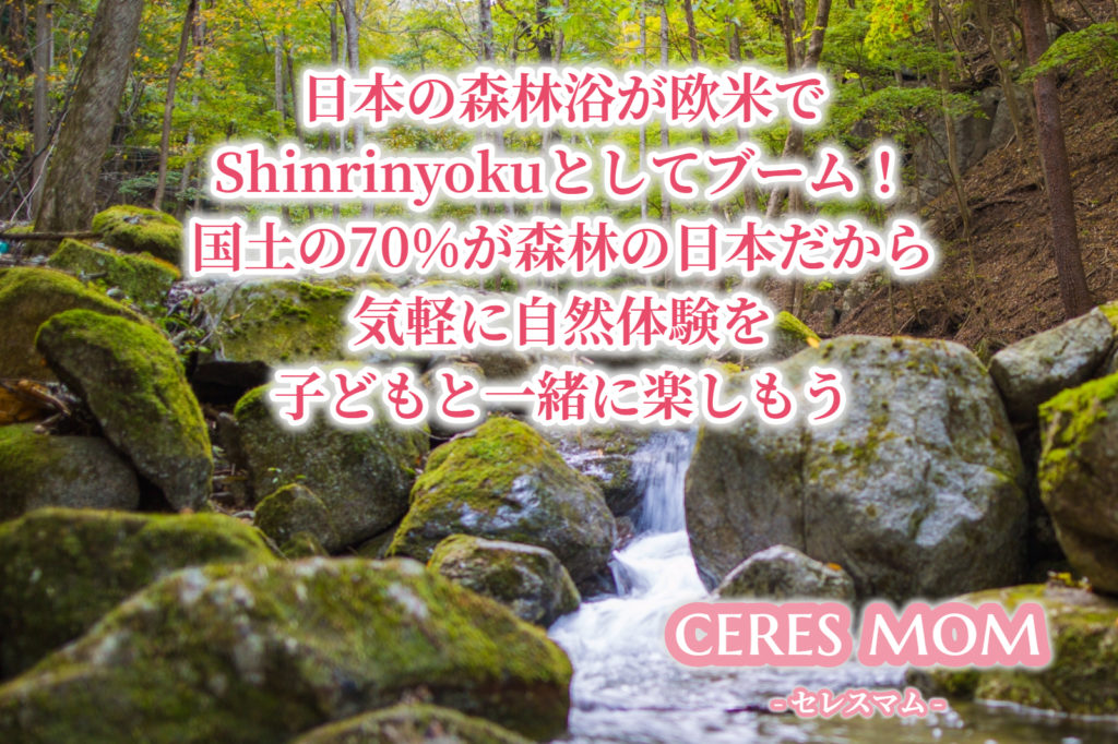 日本の森林浴が欧米でShinrinyokuとしてブーム!国土の70%が森林の日本だから気軽に自然体験を子どもと一緒に楽しもう