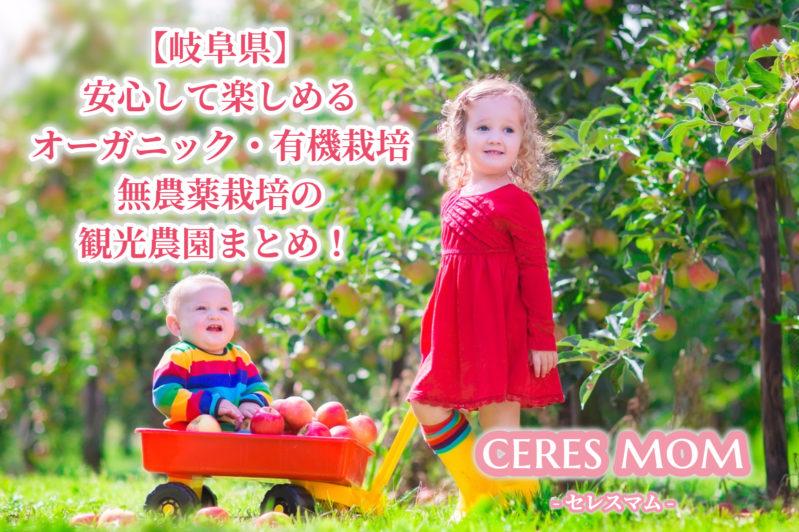 【岐阜県】安心して楽しめるオーガニック・有機栽培 無農薬栽培の観光農園まとめ