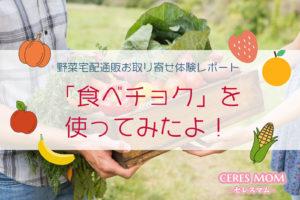 食べチョクを使ってみたよ! 野菜宅配通販お取り寄せ体験レポート