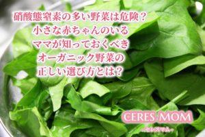 硝酸態窒素の多い野菜は危険?小さな子どものいるママが知っておくべきオーガニック野菜の正しい選び方とは?