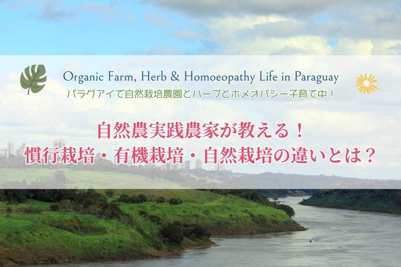 自然農実践農家が教える!慣行栽培・有機栽培・自然栽培の違いとは?[中南米、パラグアイ]