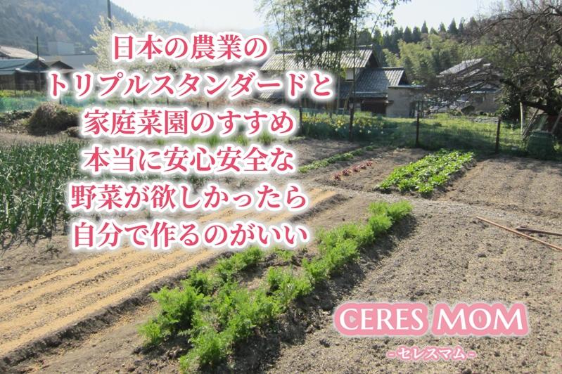 日本の農業のトリプルスタンダードと家庭菜園のすすめ 本当に安心安全な野菜が欲しかったら自分で作るのがいい
