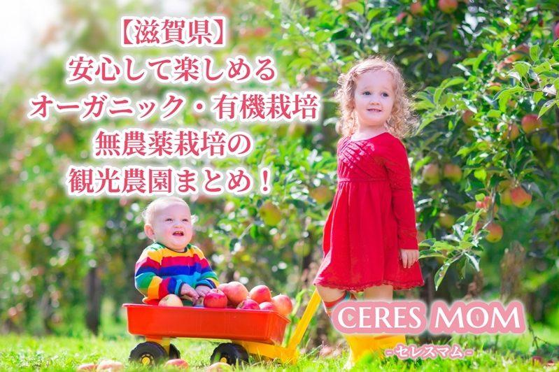 【滋賀県】安心して楽しめるオーガニック・有機栽培 無農薬栽培の観光農園まとめ